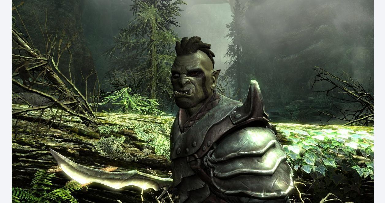 The Elder Scrolls V: Skyrim Legendary Edition | PC | GameStop