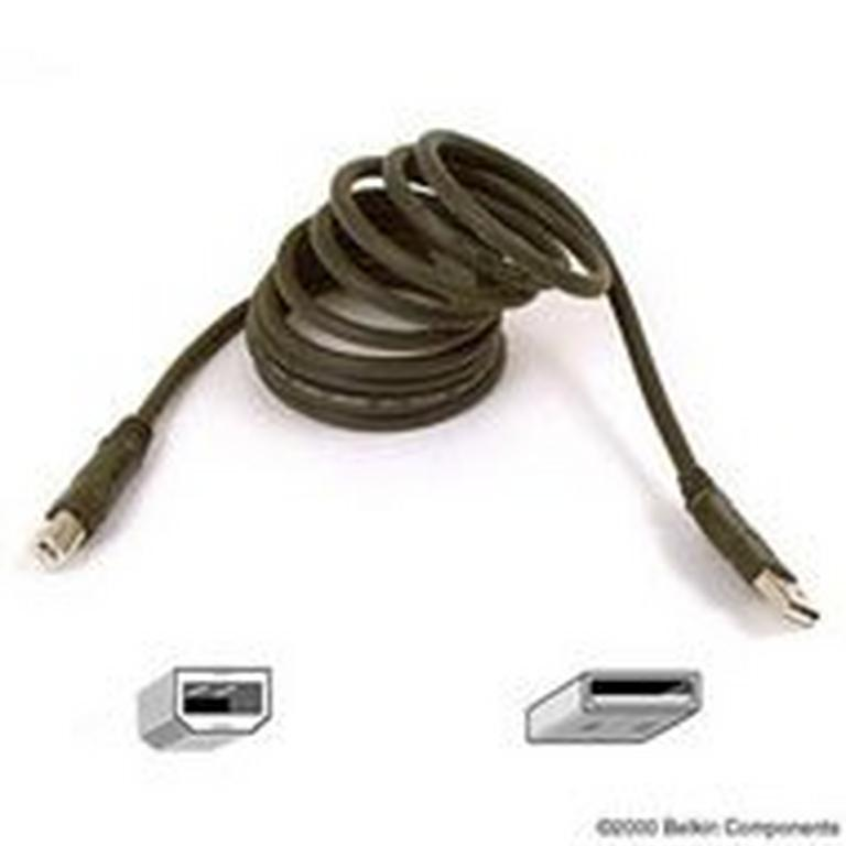 USB 2.0 Cable 16 ft