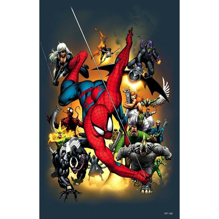 Spider Man 2004 Petite Canvas
