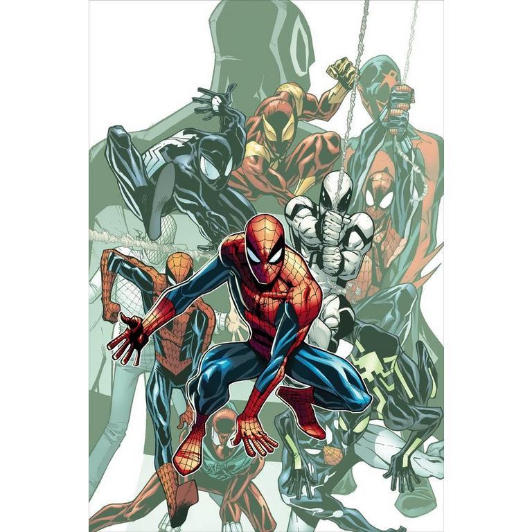 Spider Man 692 Petite Canvas