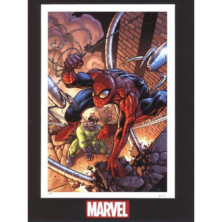 Spider-Man 45 Matted Lithograph