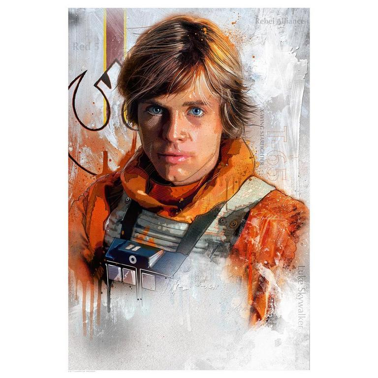 Star Wars Trust the Force 18 inch x 24 inch Lithograph