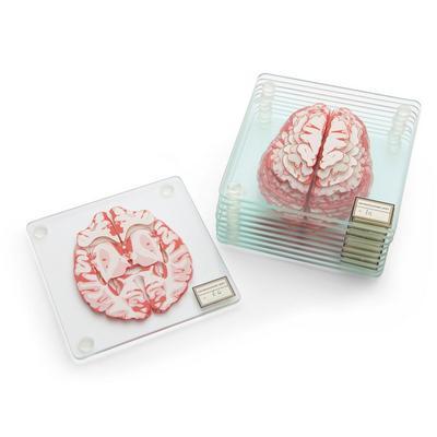 Brain Specimen Coasters - By ThinkGeek