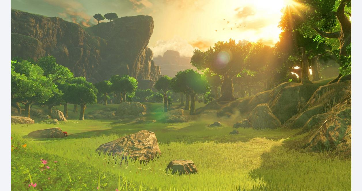 The Legend of Zelda: Breath of the Wild with Explorer's Guide
