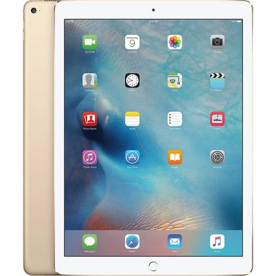 iPad Pro 9.7 in 256GB 4G
