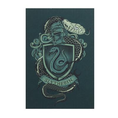 Harry Potter Slytherin House Banners A4 Light Up Canvas - ThinkGeek Exclusive