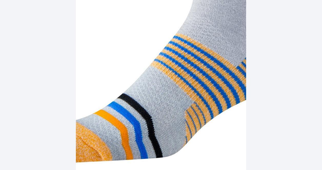Guess What, Corgi Butts Socks