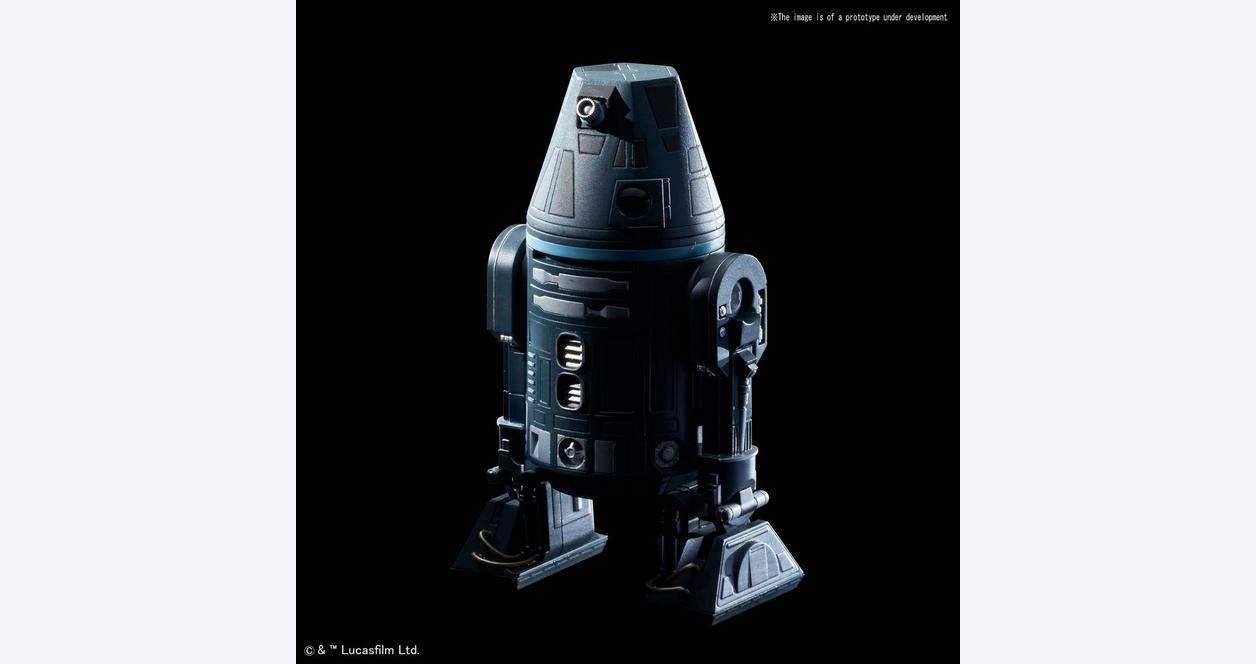 Star Wars R4-I9 Droid Model Kit