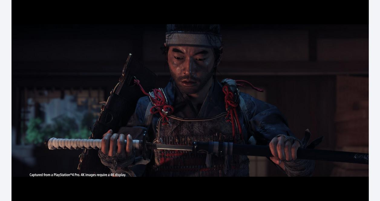 Ghost of Tsushima Special Edition