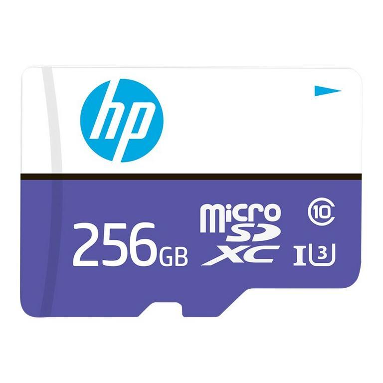 mx330 Class Flash Memory Card 256GB
