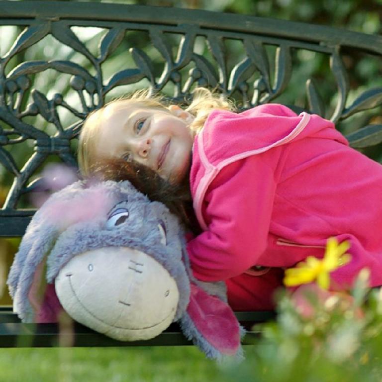 Winnie the Pooh Eeyore Pillow Pet