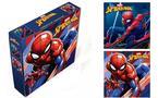 Marvel Spider-Man 2 Piece Canvas Set 6 x 6